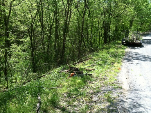 And I started cutting trees and brush from along the road right-or-way.