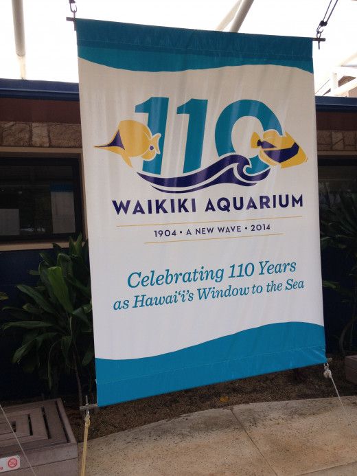 Celebrating 110 years in Hawaii !