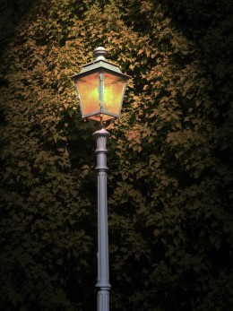 Increase the safety and aesthetics around your home by installing outdoor lighting.