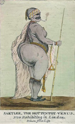 "Another drawing of the ""Hottentot Venus"""