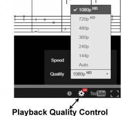 Video playback quality settings control