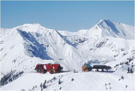 Atop Kicking Horse Resort - winter skiing at its best