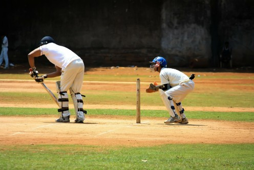 Batsmen score the runs for the team