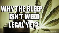Why The Bleep Isn't Weed Legal Yet?