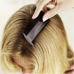 Get Rid of Head Lice For Good