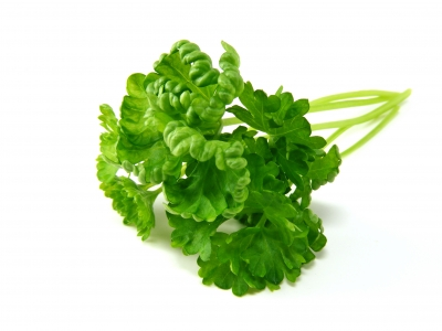 Your parsley, your hands, no one else's Lovely!