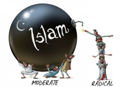 Dear Moderate Muslim; Don't Blame Extremists