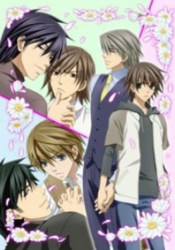 """Anime: Junjou Romantica - An example of Yaoi anime. It isn't common for anime to explicitly show sexual content, so it is usually """"shounen ai"""". However, manga is usually more graphic."""