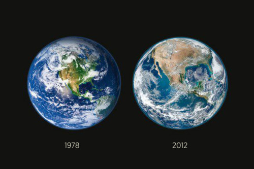 The destruction of the forests of North America from 1978-2012.
