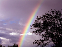 Windows Of Rainbows: inspired by a Leonard Cohen song