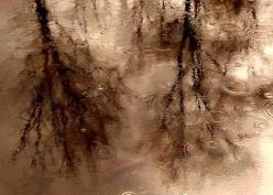 Still Raining:  A Free Write and Some Jonny Lang
