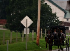 Travelling Ohio's Amish Country In Search Of Smoked Meats and Fresh Cheeses