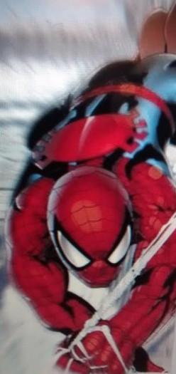 Spider-Man Vs Nightwing