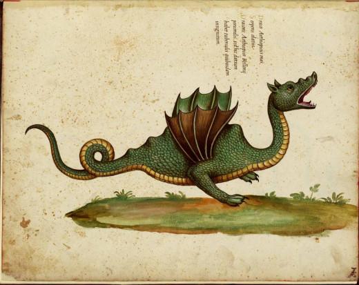 High Fantasy Dragon