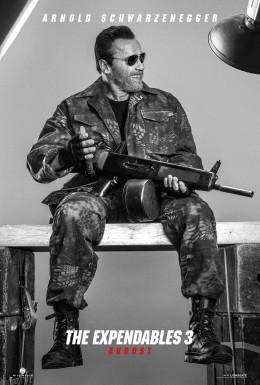 Arnold Schwarzenegger (Expendables 3)