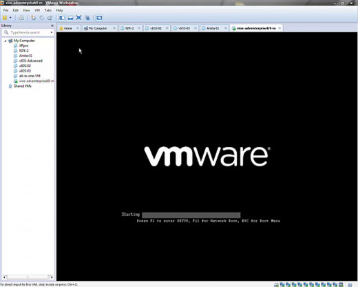 The boot screen of this VM is anticlimactic in vmWare.  It's not too lively.  You get a couple of basic black-and-white screens... THEN...