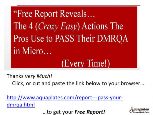 Get this Free Report that shows how the Pros Pass Their DMRQA Every Time!