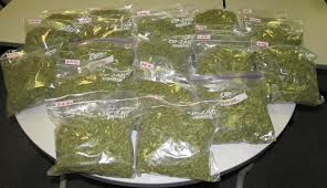 And the drug bust