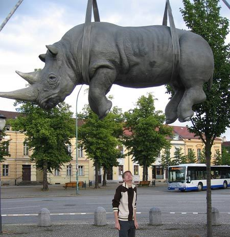 The Hanging Rhino(Potsdam,Germany)