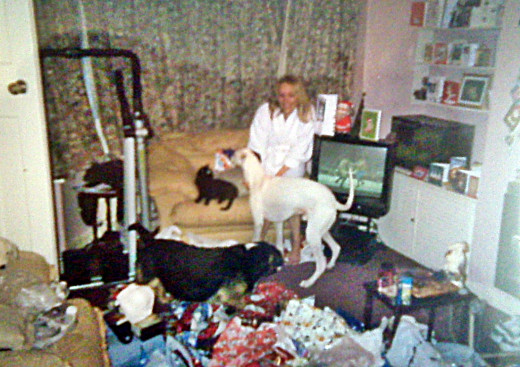 Me one Christmas Day morning, with Harley on the chair next to me and the dogs Bracken and Buster enjoying the wrapping paper!