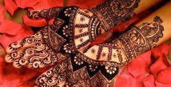 Art of Mehendi: Tips to Apply Henna on Your Hands