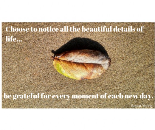 Choose to notice all the beautiful details of life...be grateful for every day.