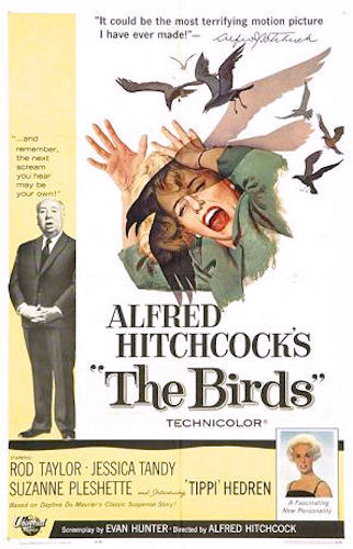 Movie poster for The Birds