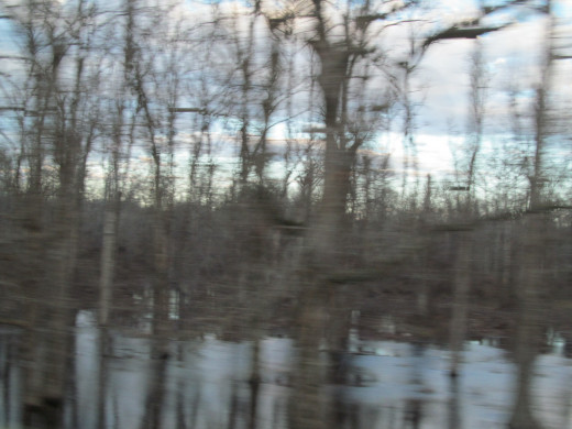 Exxon contends that none of the bituminous material has made it into any waterways...