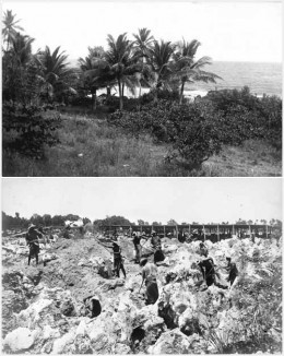 Rock-phospate mining in Banaba, Kiribati