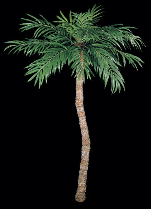 Using artificial palm trees that have either bendable trunks or curved trunks can lend a sense of realism to your silk trees. Designers use this technique when decorating in high end hotels, resorts and homes. They are affordable to most.