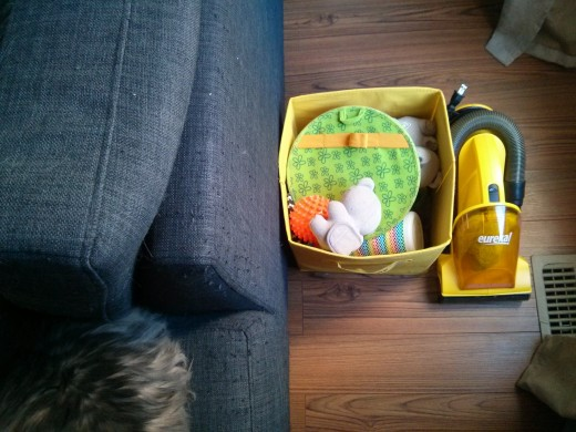 Keep toy bins and a hand-held vacuum in an easy-access, inconspicuous spot like behind the couch. Please ignore my kitty's bum and the damage he's caused to the couch :(