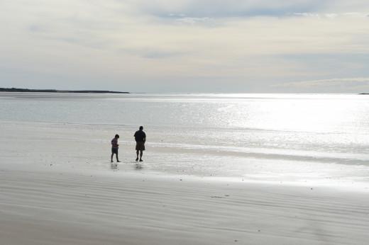 Everyday a new pristine beach
