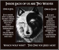 Choose Your Wolf Wisely