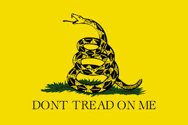 """The Gadsden Flag,"" used by the State of Virginia to warn anyone to not come messing around with their lands"