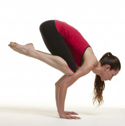 Yoga for Beginners 101: Springing_Forward for Weeks 18-21