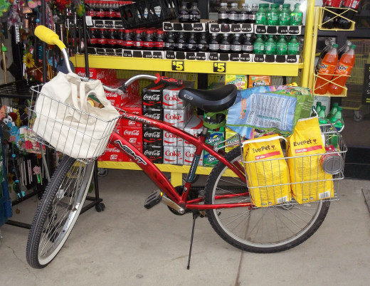 Here's my cargo bike ready to leave Dollar General.
