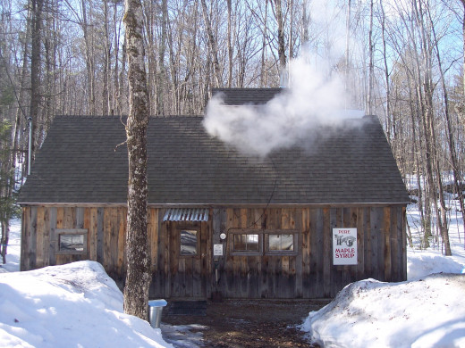 in 1972, Barbara and Don Lassonde have been making maple syrup. In 1991 they began producing it in larger quantities. Their son built the beautiful maple house that you see above.