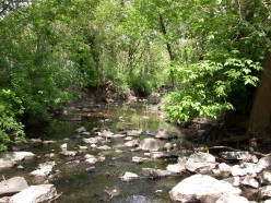 How to Safely Walk and Hike in Streams, Creeks and, Small Rivers