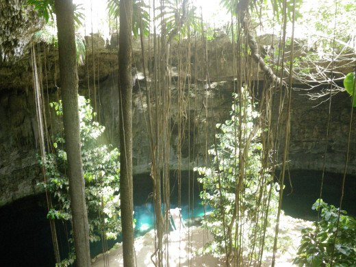 View from the steps down into the cenote
