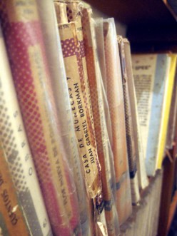 Fascinating Books for Biography Bookworms