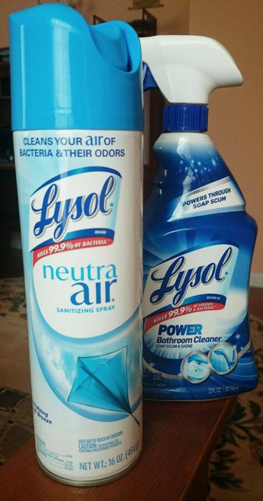Lysol soap scum remover and deodorizer. You can make these by yourself!