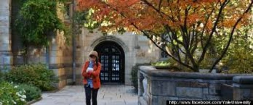 Do I have a chance into getting into the University of Seoul, Cornell Univ., or Columbia Univ.?