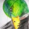 lorgh profile image