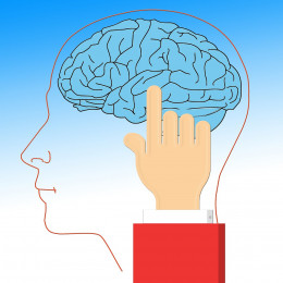 Habits are stored in certain parts of our brain