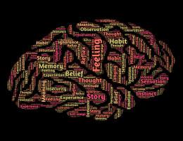 Our habits follow a neurological pattern