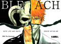 Craving Bleach? Some Similar Anime