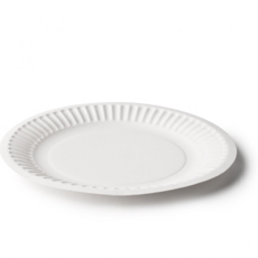 Ordinary Paper Plate