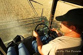 Harvesting wheat from the farmer's viewpoint
