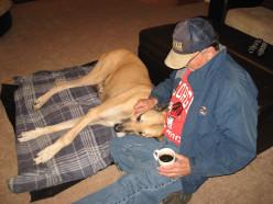 Pet Cloning - Dogs