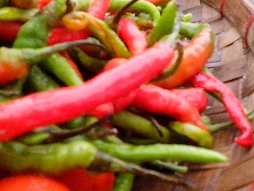 Photo Source: Ireno A. Alcala Hot Pepper